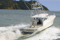 Costa rica fishing packages review and compare for Deep sea fishing costa rica