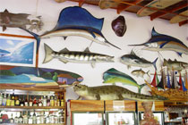 Costa Rica Fishing Vacation Bar and Grill
