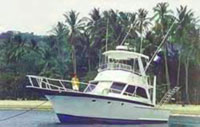 "Sport Fishing Boat named ""Resourceful"""