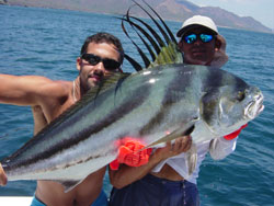 Costa Rica Fishing - Roosterfish