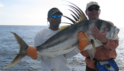 Roosterfish caught from the Fandango