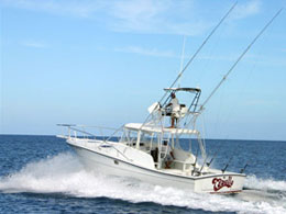 Sport Fishing Tamarindo